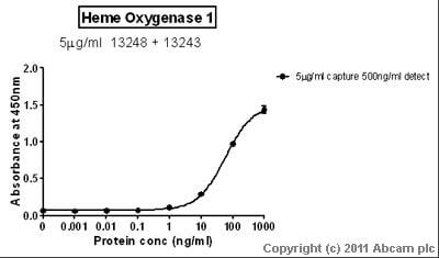 Sandwich ELISA - Heme Oxygenase 1 protein (Tagged) (ab85243)