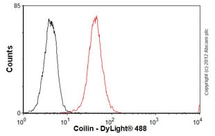 Flow Cytometry-Anti-Coilin antibody [IH10](ab87913)