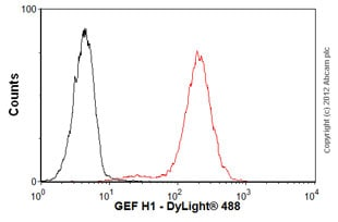 Flow Cytometry-Anti-GEF H1 antibody [B4/7](ab90783)