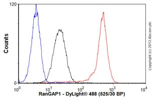 Flow Cytometry-Anti-RanGAP1 antibody [EPR3295](ab92360)