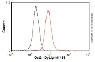 Flow Cytometry - Anti-Oct-2 [EPR542] antibody (ab92458)