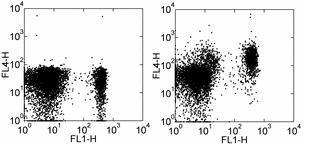 Flow Cytometry - CCR7 antibody [4B12] (Allophycocyanin) (ab93518)