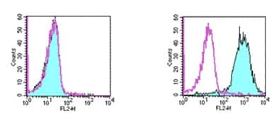 Flow Cytometry - TWEAKR antibody [ ITEM-4] (Biotin) (ab93554)