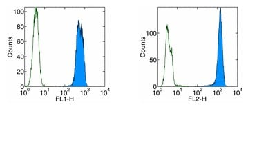 Flow Cytometry - Anti-PCNA antibody [PC10 (a.k.a. 3F81)] (Phycoerythrin) (ab93576)
