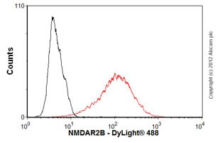 Flow Cytometry - Anti-NMDAR2B antibody [S59-36] (ab93610)