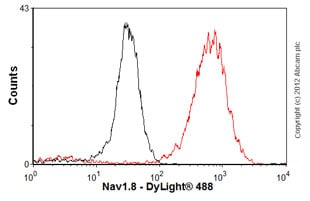 Flow Cytometry - Anti-Nav1.8 antibody [S134-12] (ab93616)