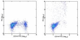 Flow Cytometry - IL12 antibody [HP-40] (Phycoerythrin) (ab95528)