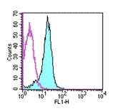 Flow Cytometry - CD31 antibody [390] (FITC) (ab95652)