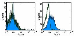 Flow Cytometry - RANKL antibody [IK22/5] (Biotin) (ab95720)