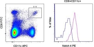 Flow Cytometry - Anti-NOTCH4 antibody [HMN4-14] (Phycoerythrin) (ab95776)