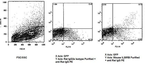 Flow Cytometry - Anti-IL20RB antibody [20RNTC] (ab95824)