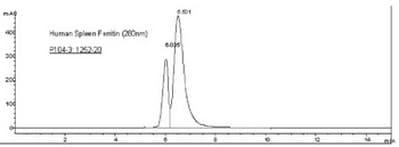 HPLC - Natural Human Ferritin protein (ab96358)