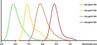 DyLight®-Goat polyclonal Secondary Antibody to Human IgG - Fc (DyLight® 550)(ab97004)