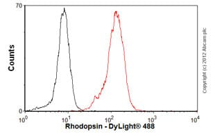 Flow Cytometry-Anti-Rhodopsin antibody [Rho 4D2](ab98887)