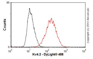 Flow Cytometry-Anti-Kv4.2 antibody [S57-1](ab99040)