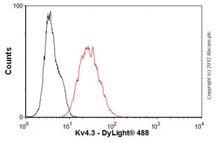 Flow Cytometry-Anti-Kv4.3 antibody [S75-41](ab99045)