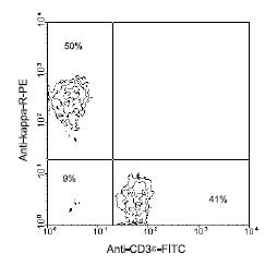 Flow Cytometry - Rat monoclonal [H139-52.1]  Secondary Antibody to Mouse kappa light chain (PE) (ab99635)