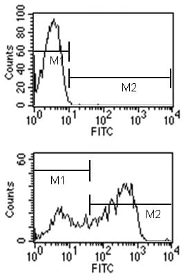 Flow Cytometry - Rat monoclonal [LO-MG2b-2]  Secondary Antibody to Mouse IgG2b - heavy chain (Biotin) (ab99640)