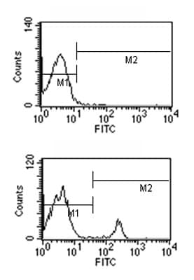 Flow Cytometry - Mouse monoclonal [2A 8F4]  Secondary Antibody to Rat IgG2a - heavy chain (FITC) (ab99665)