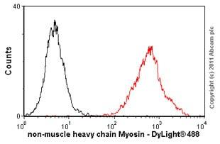Flow Cytometry - Anti-non-muscle Myosin IIB/MYH10 antibody [3H2] (ab684)