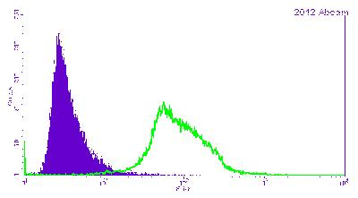 Flow Cytometry - Anti-Cyclin B1 antibody [V152] (ab72)