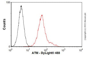 Flow Cytometry - Anti-ATM antibody [2C1 (1A1)] - BSA and Azide free (ab78)