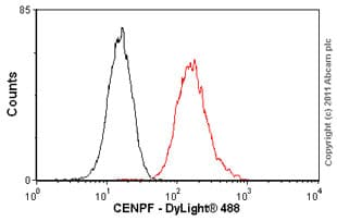 Flow Cytometry - Anti-CENPF antibody [14C10 /1D8] (ab90)