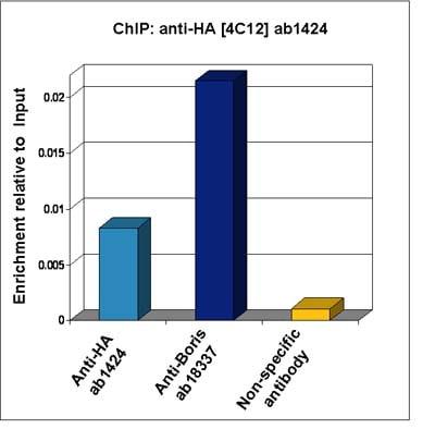 ChIP - HA tag antibody [4C12] (ab1424)