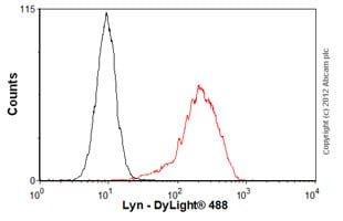 Flow Cytometry-Anti-Lyn antibody [LYN-01](ab1890)