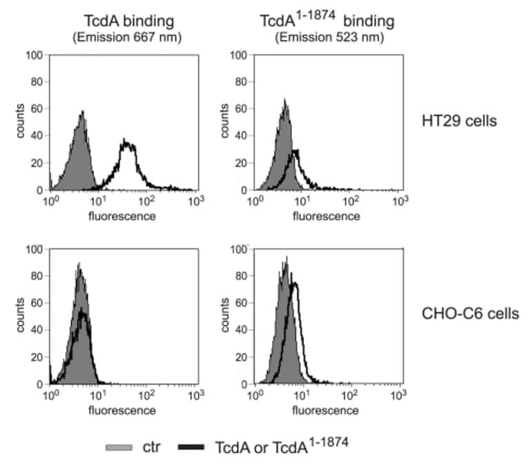 PE/Cy5® Conjugation Kit - Lightning-Link®  labeling TcdA toxin for Flow cytometry