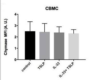 用AB10918 PE缀合试剂与抗糜酶抗体结合