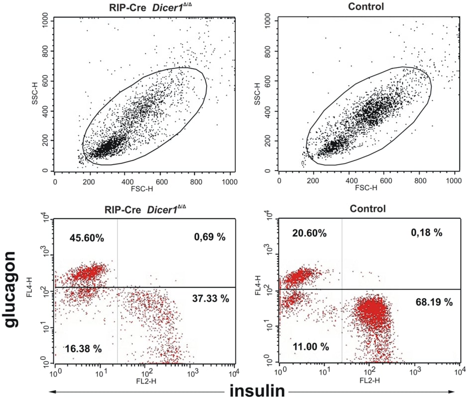 PE / R-Phycoerythrin Conjugation Kit - Lightning-Link® labeling anti-mouse insulin antibody for Flow Cytometry