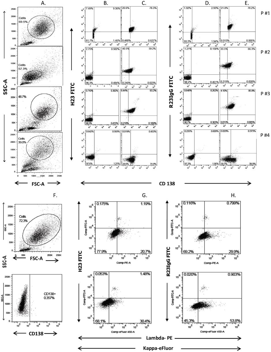 PE / R-Phycoerythrin Conjugation Kit - Lightning-Link® labeling  anti-MUC1 SP antibodies FACS