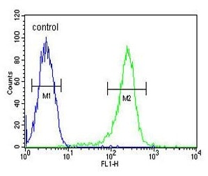 Flow Cytometry - Anti-HAUS5 antibody (ab103721)