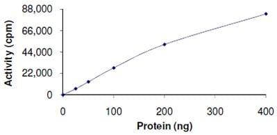Functional Studies - Recombinant human CDK1 + CCNB1 protein (ab104618)