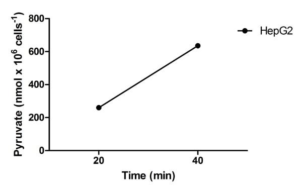 Functional Studies - Alanine Transaminase Activity Assay Kit (ab105134)