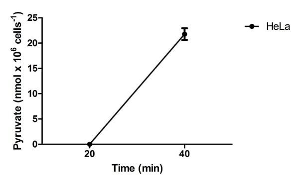 Functional Studies - Alanine Transaminase Activity Assay Kit (105134)