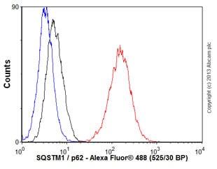 Flow Cytometry - Anti-SQSTM1 / p62 antibody [EPR4844] - Autophagosome Marker (ab109012)