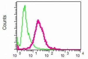 Flow Cytometry - Anti-NRG3 antibody [EPR4148] (ab109256)