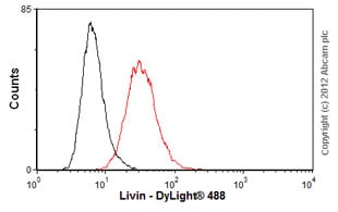 Flow Cytometry - Anti-Livin antibody [88C570] (ab11983)