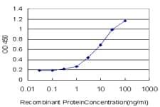 Sandwich ELISA - Anti-Talin 1 antibody [1A11] (ab110080)