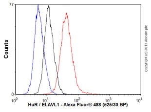 Flow Cytometry - Anti-HuR / ELAVL1 antibody [4G8] (ab110081)