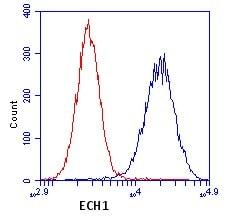Flow Cytometry - Anti-ECH1 antibody [9D11AF3] (ab110294)