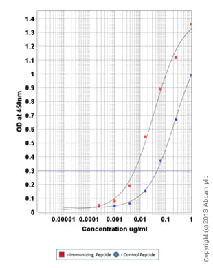 ELISA - Anti-Aquaporin 2 (phospho S261) antibody (ab110418)