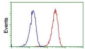 Flow Cytometry - Anti-PLEKHA3 antibody [OTI2D1] (ab117849)