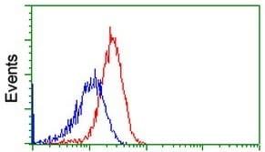 Flow Cytometry - Anti-RhoGDI antibody [OTI1F2] (ab118159)