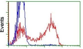 Flow Cytometry - Anti-RIT2 antibody [OTI1G2] (ab119082)