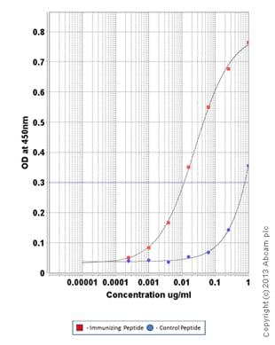 ELISA - Anti-Ret (phospho Y1062) antibody (ab123544)