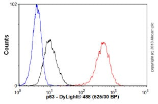Flow Cytometry - Anti-p63 antibody [EPR5701] (ab124762)