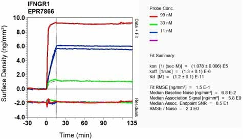 OI-RD Scanning - Anti-IFNGR1 antibody [EPR7866] (ab134070)
